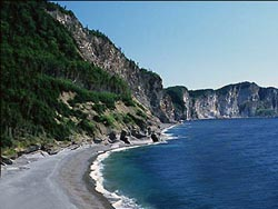 Cliffs of Forillon, Cape Gaspe in Canada