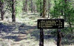 kaibab-plateau-trail